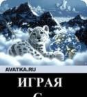 Alena_Makarova, 35, Омск